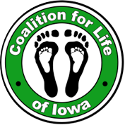 shapeimage_4